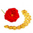 Red rose and golden chain necklace on white — Stock Photo