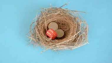 Coins and dices in the birds nest — Stockvideo