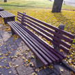 Benches group in autumn park — Stock Photo