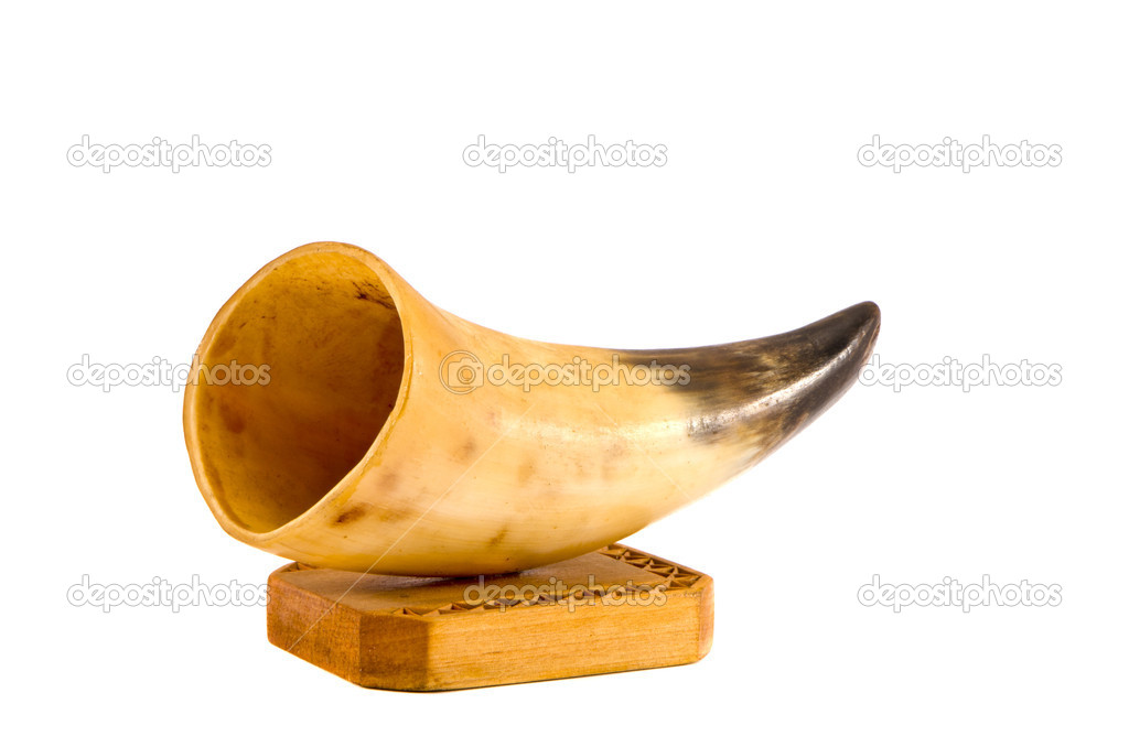 Handmade cow horn vase isolated on white background  Foto de Stock   #14928445