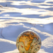 Earth globe on winter snow concept — Stock Photo