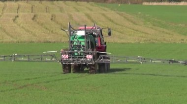 Tractor spray autumn green crop field — Stock Video
