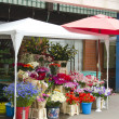 Stock Photo: Various flowers market in street