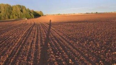 Landwirte schatten auf gepflügtes feld der herbst — Stockvideo