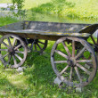 Historical wooden carriage in rural park - Stock Photo