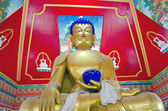 золотой будда в буддийский храм, индия — Стоковое фото