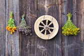 Vintage wooden wheel and medical herbs bunch — Stock Photo
