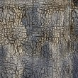 Old and cracked ruberoid background - Stock Photo