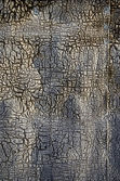 Old and cracked ruberoid background — Stock Photo