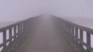 空座木桥上冬季湖和晨雾 — 图库视频影像