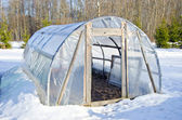 Primitive handmade greenhouse in winter time on snow — Stock Photo