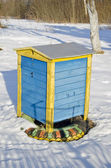Colorful wooden beehive in winter garden — Zdjęcie stockowe