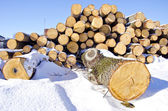 Firewood stack on winter snow — Stock Photo