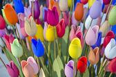 Desenfoque de fondo de tulipanes de pascua de madera colorida — Foto de Stock