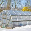 Handmade polythene greenhouse for vegetable  in winter  on snow — Foto de Stock