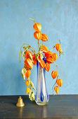 Vas med torra skalet tomat blommor och klocka — Stockfoto
