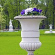Ornate decorative flower pot in manor park — Stock Photo #23296674