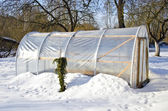 Handmade polythene greenhouse for vegetable in winter — Stock Photo