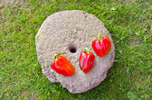 Three red peppers on old millstone — Stock Photo