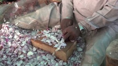 Sikh cuting onions in Amritsar temple, India — Stock Video
