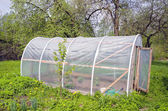 Primitive plastic greenhouse in farm garden — Stock Photo