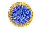 Cornflowers blossoms in wicker plate isolated on white — Stock Photo