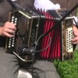 Musicians cheerfully playing with accordion — Stock Video #27765395