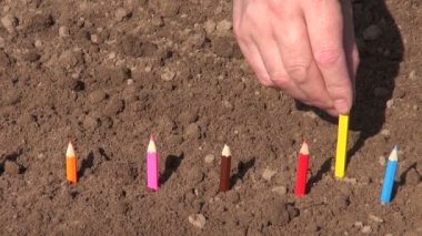 Planting in spring garden soil colorful pencils — Video Stock
