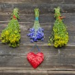 Medical herbs bunches and heart symbol on old wall — Stock Photo
