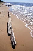 Tom sommaren havet stranden landskap — Stockfoto