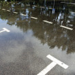 Asphalt street after summer rain — Stock Photo