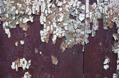 Old wooden door with aged paint background — Stock Photo