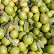 Guava fruits in asian market, India — Stock Photo