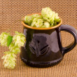 Ceramic mug for beer with hop cones — Stock Photo