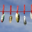 Various vintage metal lures - spoons on cloth string and sky — Stock Photo #33854339