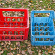 Two empty plastic boxes for beer bottles on autumn grass — Stock Photo