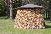Stack firewood fuel in garden — Stock Photo