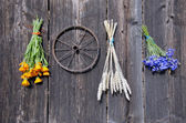 Wheat and medical herbs bunch on old wooden wall — 图库照片