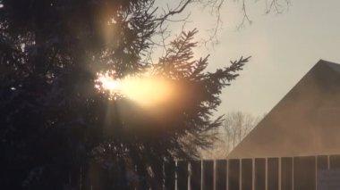 Winter morning  mist in village — Stockvideo