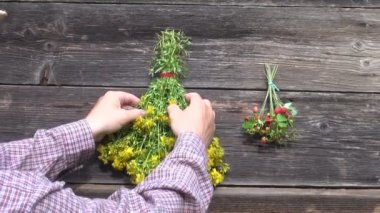 Hanging on  wall St Johns wort and wild strawberry bunches — Stock Video