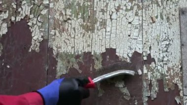 To scrape old paint from house wall plank with metal brush — Stock Video