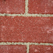 Stock Photo: New sidewalk bricks background