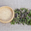 Fresh spring medical neetle herb for salad on linen cloth — Stock Photo