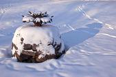 Gamla manor park fontän konstruktion på vintern — Stockfoto