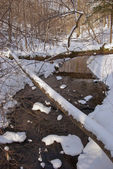 Beautiful winter river in snowy forest — Stockfoto