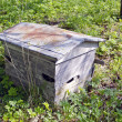 Stock Photo: Old weathered wooden bee hive in garden