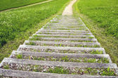 Old wooden outdoor stair with gravel in national park — Stock Photo
