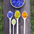 Stock Photo: Various summer medical herbs in wooden spoons and plate