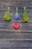 Medical flowers bunches collection on old wooden wall — Stock Photo
