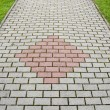 New pavement bricks background — Stock Photo #43090863